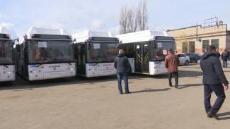 Подвижный салон и отсутствие ступенек. Воронежцев пересадят на лучшие в стране автобусы городского типа