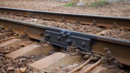 В Воронежской области мужчина выжил после того, как его сбил поезд