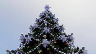 Стало известно, когда разберут главную новогоднюю ёлку Воронежа