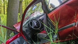 Водитель отделался условным сроком за пьяное ДТП с погибшим в Воронежской области