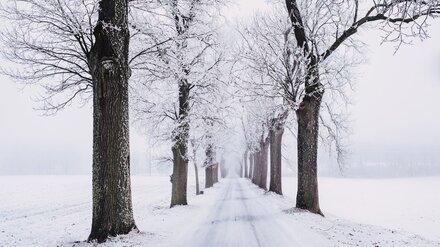 Прогноз погоды на 16.12.2020