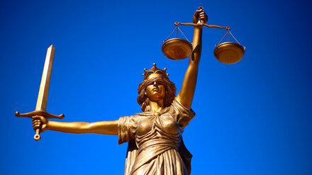 ЕСПЧ присудил 2 тыс. евро получившему срок за аферу на 100 млн воронежскому юристу