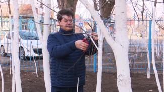 Житель Воронежа за 20 лет высадил мини-лес у многоэтажки