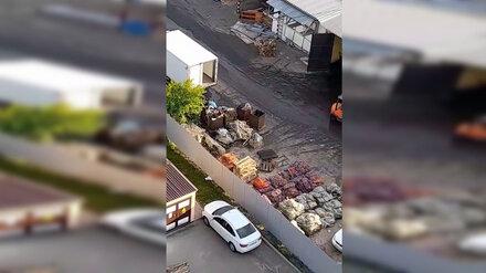Воронежцы пожаловались на гниющий под окнами склад овощей