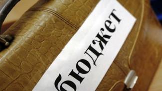 Воронежские парламентарии утвердили исполнение бюджета 2017 года