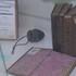 В Воронеже открылась выставка старинных книг, украденных немцами в годы войны