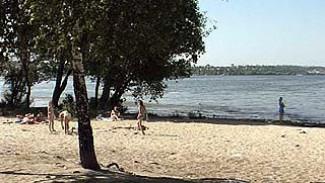 Песчаный пляж в Воронеже завален мусором