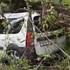 Последствия падения огромного дерева на «Ладу» в Воронеже сняли на видео