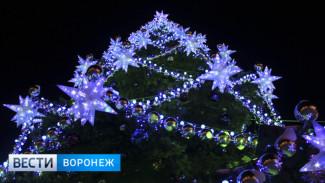 Открытие главной ёлки Воронежа пройдёт с пиротехническим шоу «холодного огня»