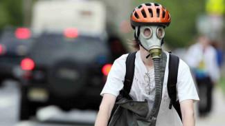 Воронежцы о запахе фекалий в городе: «Мы проснулись от ужасной вони»
