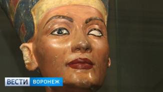 Выставка «Образ Нефертити» в воронежском музее Крамского на день станет бесплатной