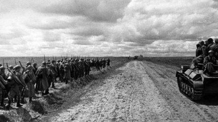 В Воронеже пройдёт лекция об участии наших земляков в Курской битве