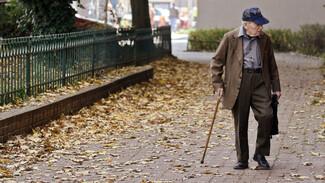 В Воронежской области не стали менять прожиточный минимум пенсионера на 2021 год