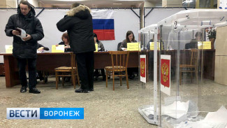 В Воронежской области закрылись избирательные участки