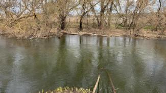 В Воронежской области на пикнике у реки утонул 10-летний ребёнок