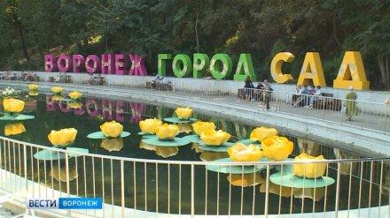 Девятый воронежский фестиваль «Город-сад» стал рекордным по посещаемости