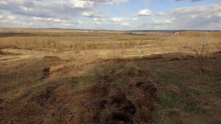 В Воронеже пообещали наказать уничтоживших бульдозером памятник природы вблизи «Костёнок»
