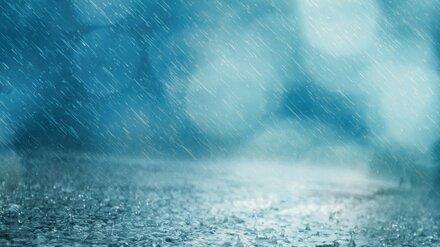 Метеорологи рассказали, когда в Воронеже закончатся суперливни