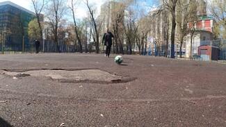 Дырявые заборы и сгнившие покрытия. Когда спортплощадки в Воронеже дождутся ремонта