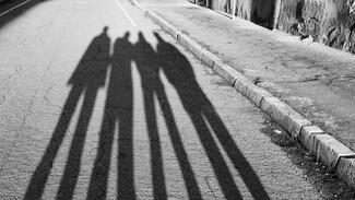 В Воронежской области банда подростков ограбила прохожих