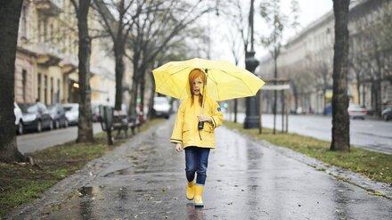 Воронежцам пообещали сильные дожди с градом и грозами на рабочей неделе