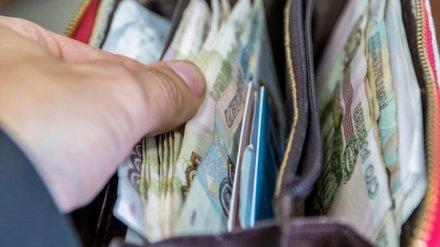 Аналитики: средняя зарплата в Воронежской области за месяц  увеличилась