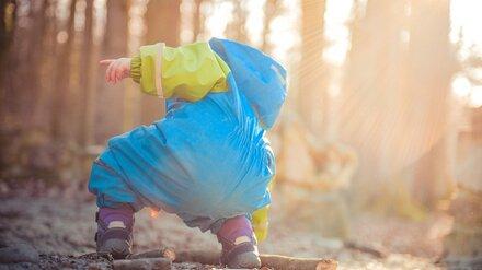 В Воронежской области нашли потерявшегося в лесу трёхлетнего мальчика