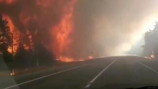 Пожарные получили 100 вызовов из-за вернувшегося в Воронежскую область сильного ветра