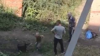 В воронежском дворе сняли на видео публичную порку мальчика