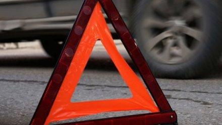 На воронежской трассе автобус насмерть сбил пешехода