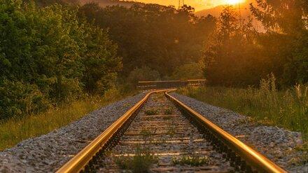 Десять человек погибли на железной дороге в Воронежской области в 2020 году