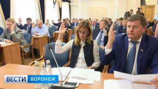 Гордума утвердит новый порядок выборов мэра Воронежа 17 января