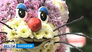В Воронеже у Центрального парка к выставке «Город – сад» появится временная парковка