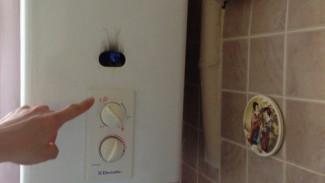 В Воронеже проведут массовые проверки газового оборудования в жилых домах