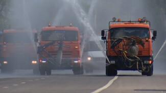 Воронежские коммунальщики вышли на борьбу с жарой