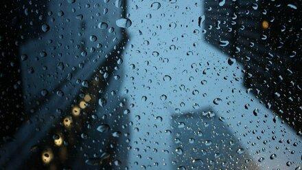 Синоптики пообещали воронежцам потепление до +5 в выходные