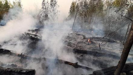 МЧС зарегистрировало три новых пожара в Воронежской области
