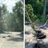 В воронежском микрорайоне на оживлённой дороге провалился асфальт