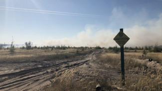 Ландшафтный пожар в Боровом разгорелся на территории заказника «Воронежский»