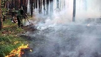 В Воронеже и пяти районах области ожидается высший класс горимости