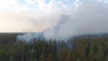 В Воронеже из-за опасности лесных пожаров дежурит вертолёт