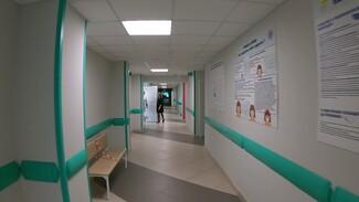 Воронежцам пообещали исчезновение очередей в 87 поликлиниках