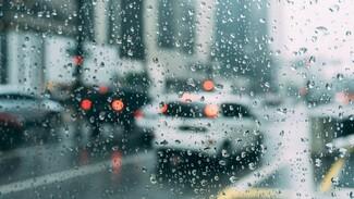 Понедельник встретит воронежцев дождями