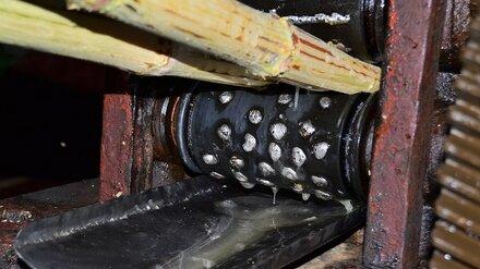 Попавший в конвейер рабочий отсудил у воронежского сахзавода 400 тысяч