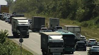 «Автодор» объявил конкурс на строительство дороги в обход Лосево и Павловска