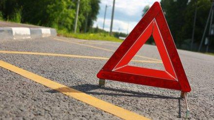 В Воронежской области микроавтобус влетел в дорожное ограждение: погиб мужчина