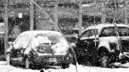 В Воронежскую область идут снег с дождём