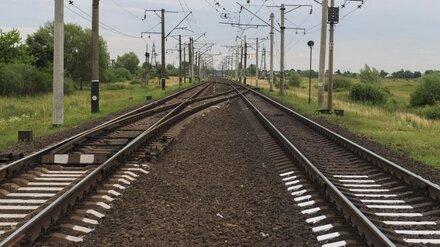 Воронеж и Белгород свяжет рельсовый автобус