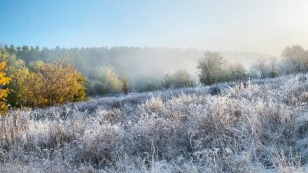 Воронежец показал завораживающие фото утренних заморозков