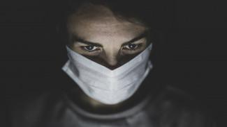 Воронежцев предупредили о фейковом сборе денег на маски для больниц